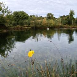 Fishing Spots UK