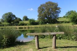 Summer Fishing Hampshire
