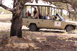 Selous Riverside Safari Camp Vehicle