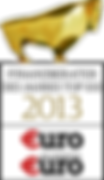 Finanzberater des Jahres 2013