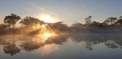 80 Bianca Gold - Wimmera River sunrise - Autumn 2021