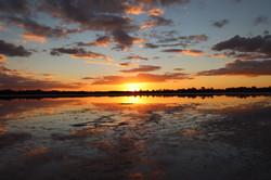 92 Suzanne Puls - Pink Lake