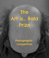 Art is Bald prize quick link.PNG