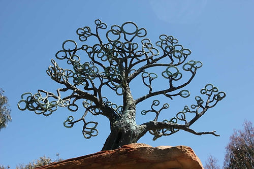 scar tree - public art trail.jpg