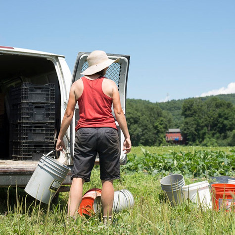 The Kitchen Garden: A couple leaves the city to build an organic vegetable farm in Sunderland, MA