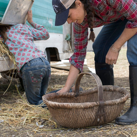 Five Marys Farms: Silicon Valley small-business entreprenuers relocate to the country to build a family ranch business from scratch