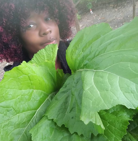 Katrina Harvey of Soul Botanical Farms discovers the healing power of plants in Mulberry, FL