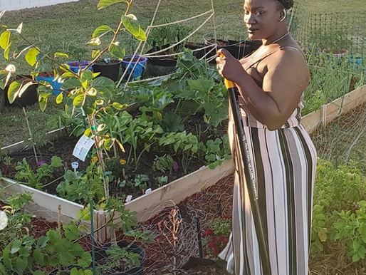 Growing Goodness in Georgia: Meet Erica of Gardening Under the Influence