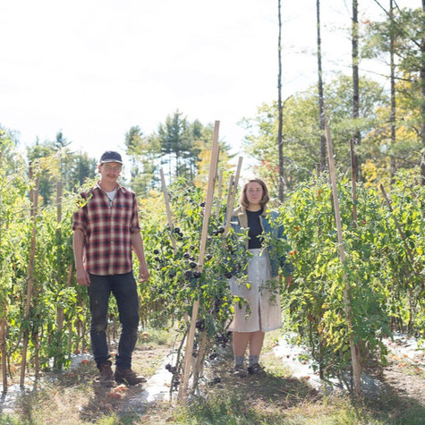 Artists and NYC service workers leave the city to start an organic CSA in rural Maine