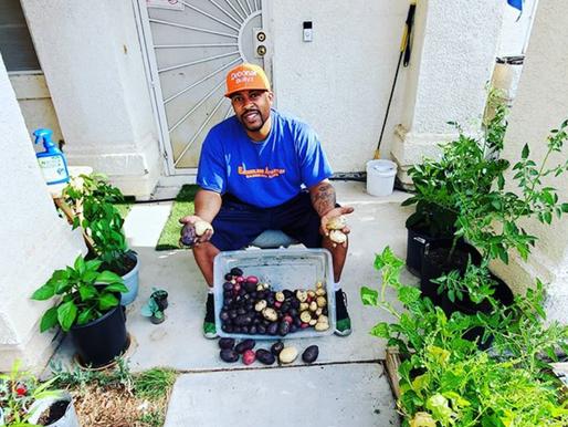 Growing Goodness: Meet Vegas Homesteader Gerald Owens Jr. of @og_gardenfrenzy