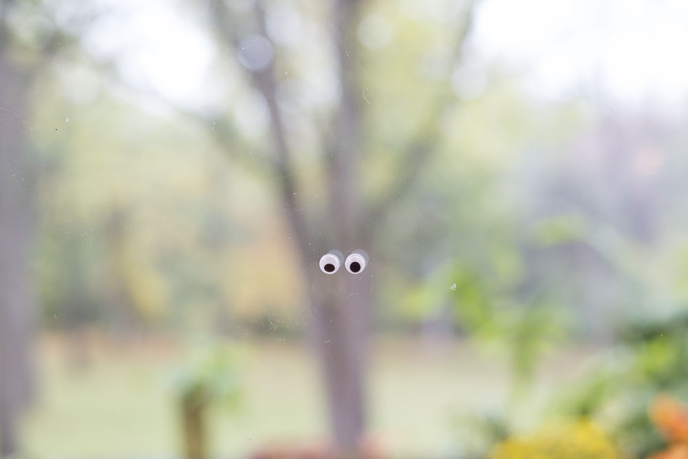 Googly eyes hidden all over the home