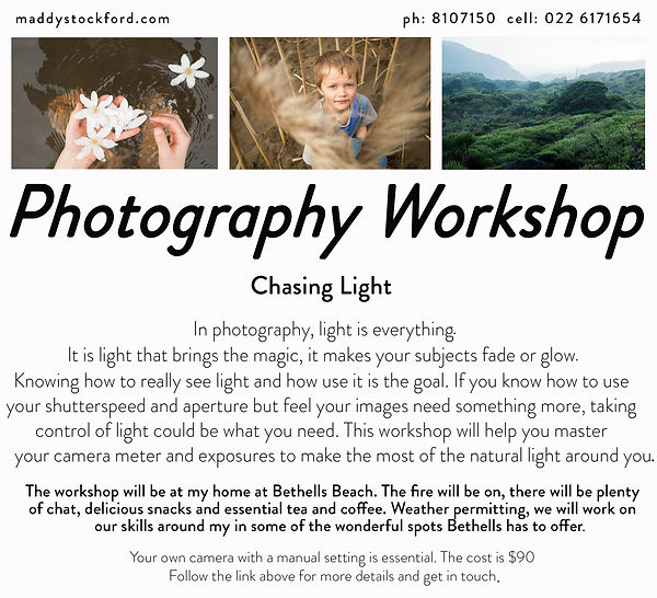 Auckland Photography Workshops