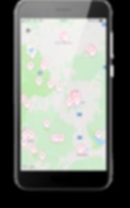 Krásná Lípa piny v mapě_600px.png
