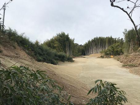 Samurai Screams in The Woods of Ogurisu