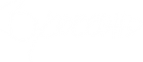 bycorroh signature white transparent.PNG