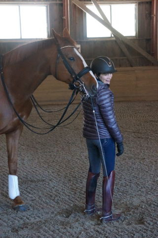 5 Steps to Let Your Dressage Horse Train You