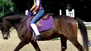Trainers often have a profound impact on their student's lives: The Story of Hannah, her pony Little