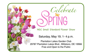 Celebrate Spring with PLGC