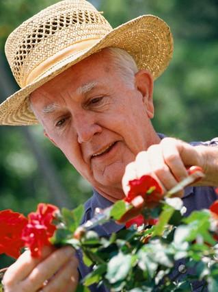 Three Garden Club Myths De-Bunked