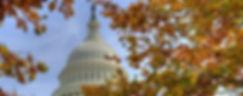 D.C. Fall Capitol iStock-184857716_edite