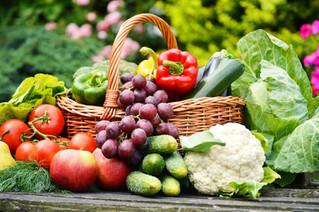 September Gardening Guide