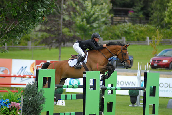 Joelle Froese jumping her Young Riders' horse, Condor