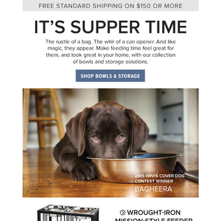 Orvis Email - Dogs