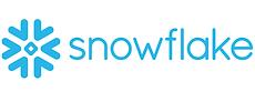 snowflake (1).png