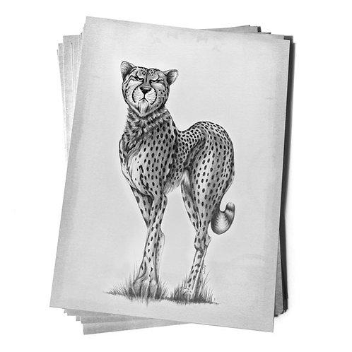 proud cheetah