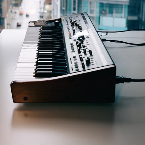 Synthesizer ( Moog, Roland Boutique, Korg Minilogue