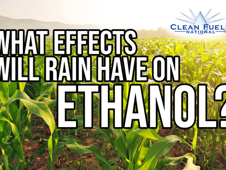 What Effects Will The Rain Have on Ethanol?