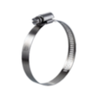 Stainless Steel Worm Drive Clamp-WP.png