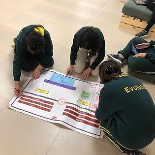 IB evolution international school