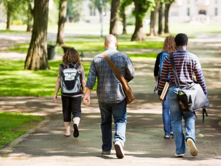 Si volvieras a tener 18 años, ¿qué estudios elegirías?
