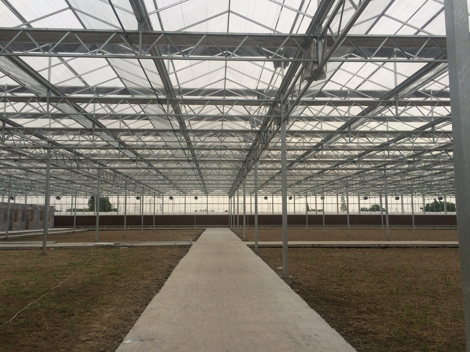 glass greenhouse 2