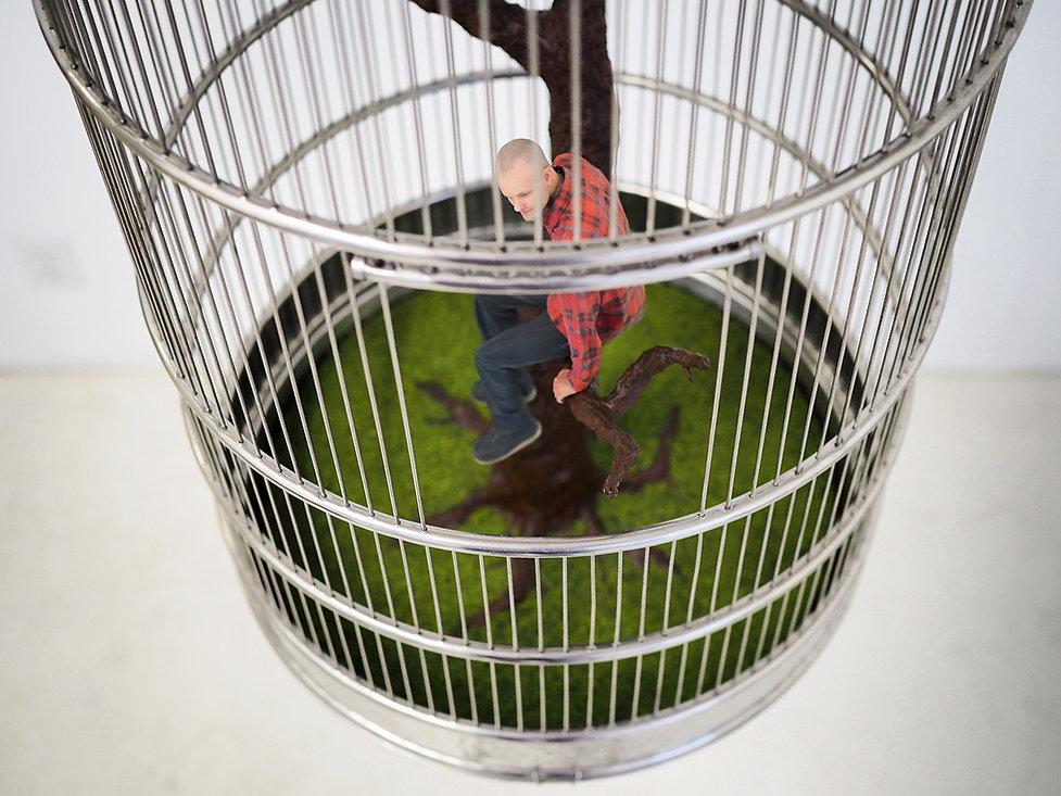 Comfortable Captivity