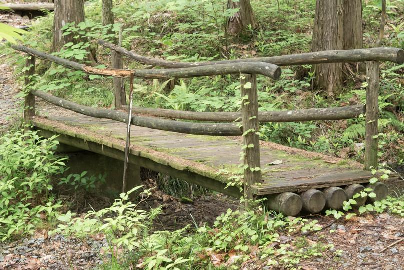 trail33.jpg
