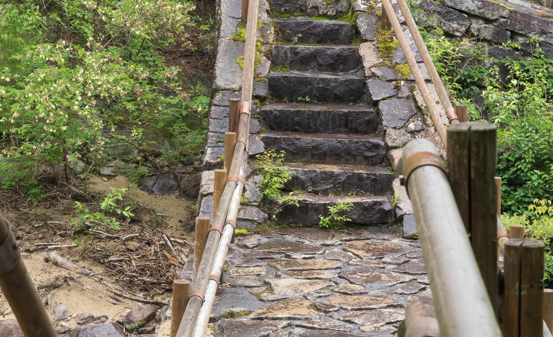 trail14.jpg