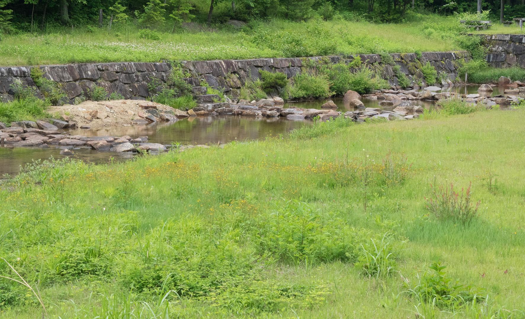 trail31.jpg