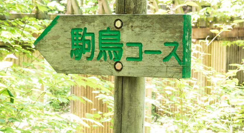 signs9.jpg