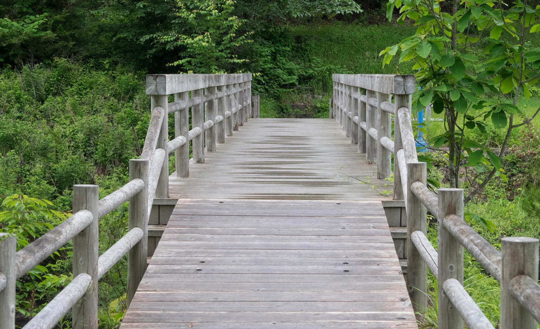 trail30.jpg