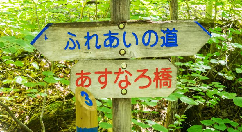 signs8.jpg