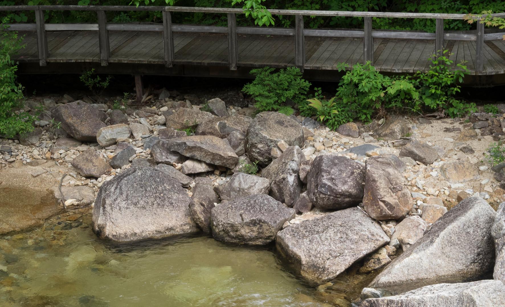 trail11.jpg