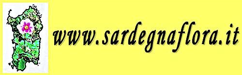 www.sardegnaflora.it.jpg