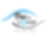 logo-Vueducoeur_2015HD.png