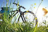 Voyage, vélo, tandem, itinéraires