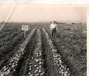 Hinman in fields0001.jpg