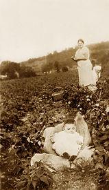 enhanced photo of baby in bean field.jpg
