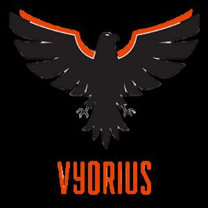 Vyorius Drones LLP