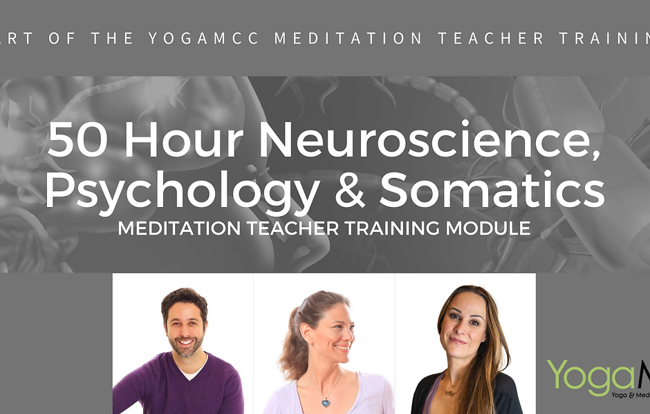 Banner Neuroscience Psychology & Somatic